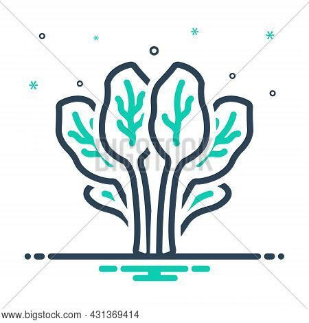 Mix Icon For Spinach Leafy Green Healthy Foliage Nutrition Salad Herb Vegetable Agriculture Cultivat