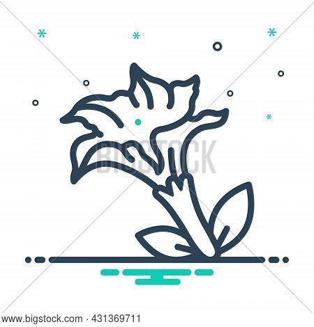 Mix Icon For Datura-stramonium Jimsonweed Nightshade Thorn-apple Jimson-weed Pointillism Medicinal A