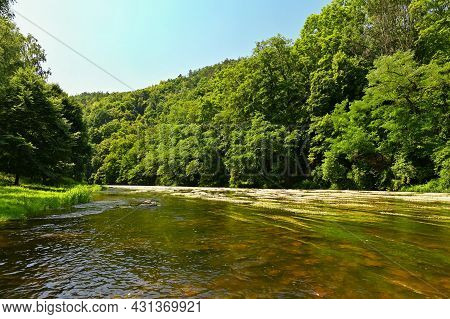 Beautiful Summer Landscape With River, Forest, Sun And Blue Skies. Natural Colorful Background. Jihl