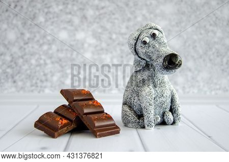 Cute Funny Toy Dog Looks At A Delicious Sweet Chocolate Bar Lying Nearby. Diet, Avoiding Sweet