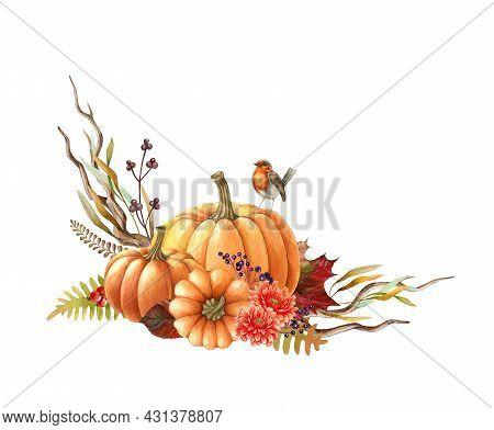 Pumpkin Autumn Arrangement. Watercolor Illustration. Hand Drawn Rustic Thanksgiving Festive Decor. R