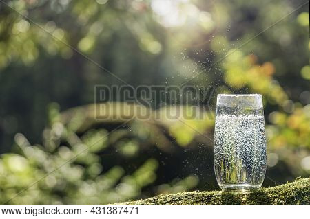 A Glass Of Drinking Water On The Background Of A Forest In Summer, Mineral Natural Water And Copy Sp
