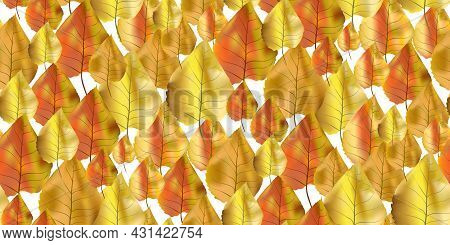 Seamless Pattern Bright Colorful Autumn Foliage Isolated On White Background. Graphic Design Autumn