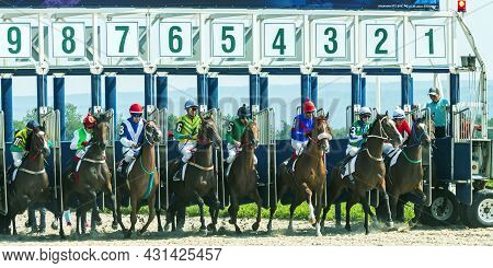 Pyatigorsk,russia - August 29,2021:start Gates For Horse Races For The Prize Of Breeders Of Russia I