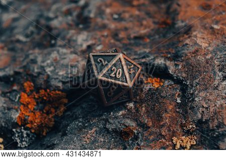 Close-up Image Of One  20-sided Metallic Role-playing Die On Rock Surface Covered With Lichen