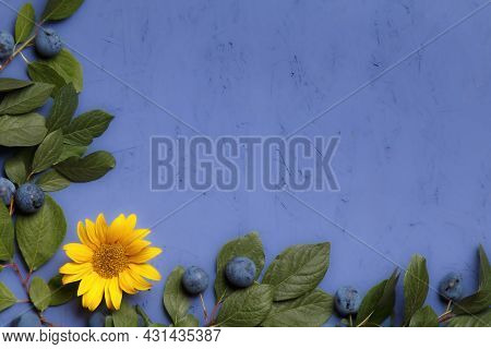 Composition Of Branches With Blackthorn Berries, Sunflower Flower On A Purple Background. Thanksgivi