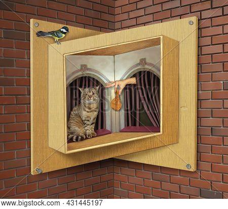 A Beige Cat Eats A Chicken Leg On A Sill Of A Wooden Impossible Window.