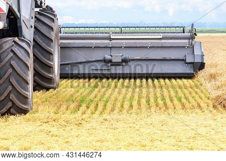 Agricultural Machinery And Equipment Of A Combine Harvester, An Element Of A Header And Harvesting.