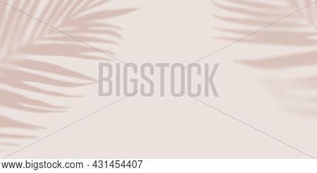 Pastel Shadow Tropical Palm Leaves On Light Pastel Background. Creative Copyspace. Unobtrusive Backg