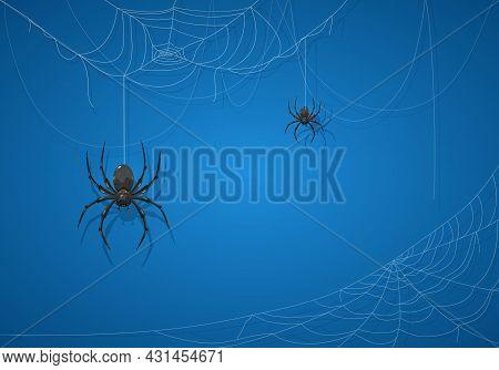 Big Black Spider On Blue Halloween Background. Banner With Scary Black Spiders On Cobwebs. Illustrat