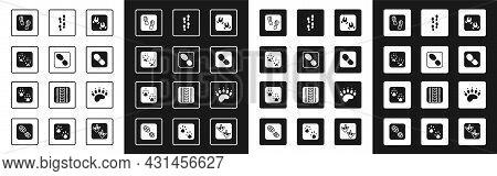 Set Wild Boar Paw Footprint, Human Footprints Shoes, Fox, Bear And Paw Icon. Vector