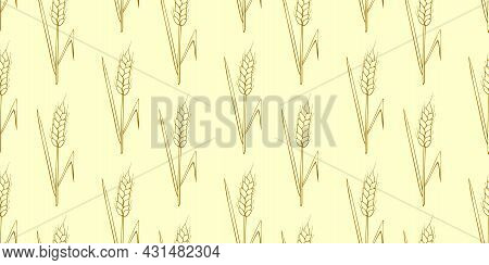 Wheat Spikelets, Vector Seamless Pattern In Doodle Style, Isolated. Design Of Fabric, Wrapping Paper