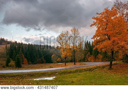 Autumn Countryside Scenery In Mountains. Trees In Colorful Foliage By The Road. Serpentine Winding T