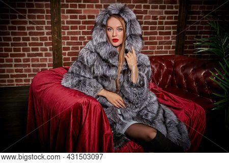 Attractive blonde girl in an expensive silver fox fur coat sitting on a velvet sofa. Fur coat fashion. Luxury lifestyle.