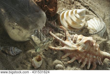 Shells with glass bottle, beach scenery on the sandy beach