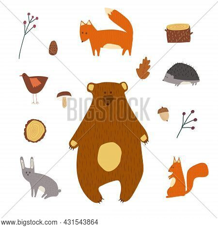Hand Drawn Cartoon Vector Illustration Set Of Cute Forest Park Wild Animals Bear, Fox, Rabbit, Hare,
