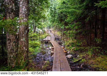 Elevated Boardwalk Path Along Western Edge Of Jordan Pond In Acadia National Park, Maine, Usa