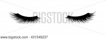 Eyelashes Of Closed Eyes. Fashion Illustration. False Lashes. Black And White Hand-drawn Image. Vect