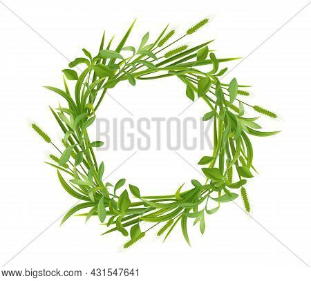 Grass Young Cereal Plants Spikes Ears Leaves Natural Green Realistic Round Frame On White Background