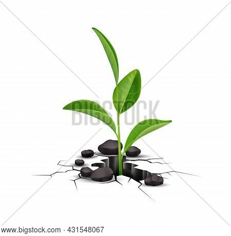 Plant Ground Cracks Realistic Composition With Isolated Image Of Green Sprout Growing From Hole In G