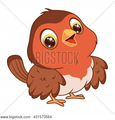 Red Robin On White Background. Cartoon Vector Illustration