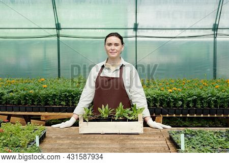Confident female farmer in workwear standing by workplace inside large hothouse