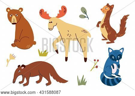 Woodland Animals Set.  Hand Draw Bear, Anteater, Moose, Ferret And Raccoon. Wild Forest Animals. Sca