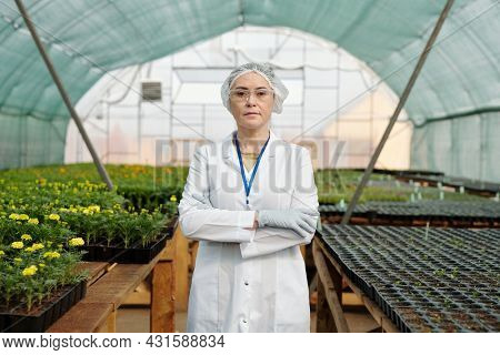 Confident female scientific expert in protective workwear standing against tables with growing seedlings in large greenhouse