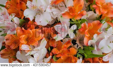 Close Up Top View: Large Beautiful Bouquet Of Orange And White Alstroemeria Or Peruvian Lilies Flowe
