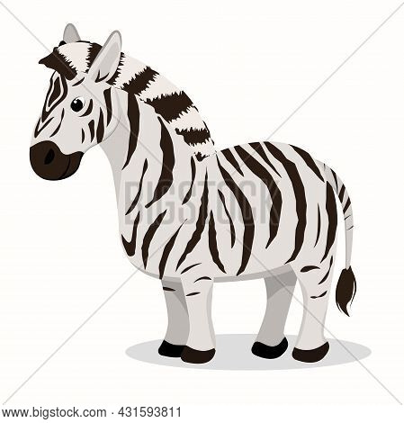 Vector Illustration Of A Zebra Isolated On A White Background