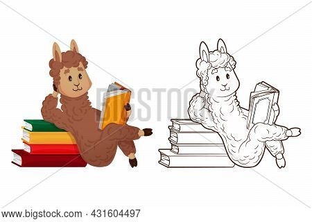 Coloring Book, Cute Lama Is Reading Lying Down, Leaning On A Stack Of Books. Vector Illustration In