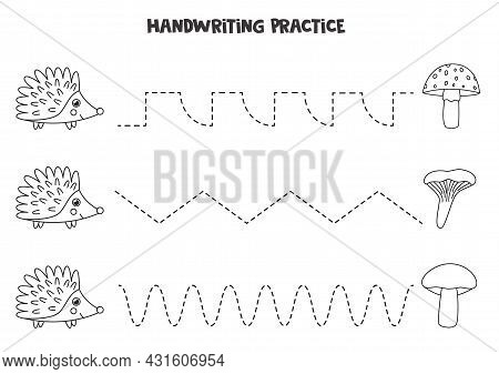 Tracing Lines For Kids With Cute Black And White Hedgehog And Mushrooms.