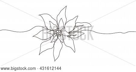 Continuous One Line Drawing. Concept  Holiday, Poinsettia Flower Isolated On White Background. Hand-