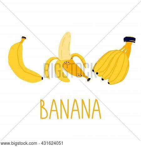 Bright Vector Set Of Bunches Of Fresh Banana. Peel Banana, Yellow Fruit And Bunch Of Bananas. Fresh