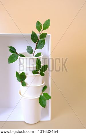 Ecology. A Stack Of Paper Cups With Green Leaves In A White Box On A Delicate Background. The Concep