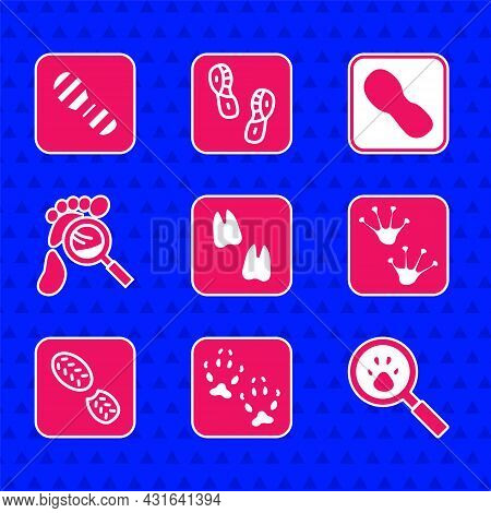 Set Camel Paw Footprint, Fox, Paw Search, Frog, Human Footprints Shoes, Magnifying Glass With Footst