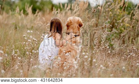 Little girl with golden retriever dog sitting in the field in summer day. Child with doggy pet portrait from back at nature