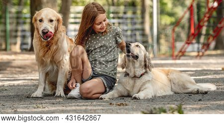 Preteen girl petting golden retriever dogs in the park. Cute child with doggy pets sitting outdoors