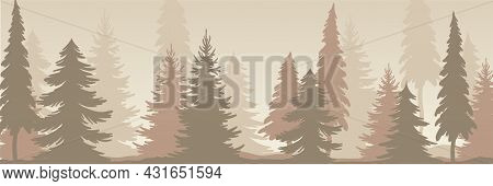 Fir Tree Silhouette With Tall Trunk And Branches As Misty Forest Horizontal Backdrop Vector Illustra