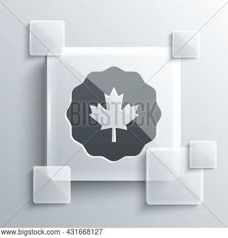 Grey Canadian Maple Leaf Icon Isolated On Grey Background. Canada Symbol Maple Leaf. Square Glass Pa