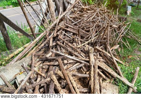 Firewood, Woodpile Of Freshly Chopped Pine Logs In The Forest Stacked On Top Of Each Other,  Selecti