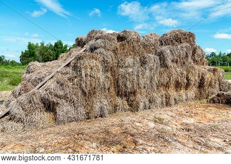 Pile Of Straw, Stack Of Straw Texture Image, Dry Baled Hay Bales Stack, Rural Countryside Straw,  Na
