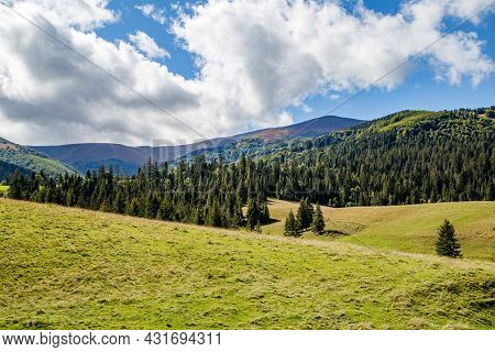 Glade With Grass On The Hills With Coniferous Forest On A Background Of Mountains And Blue Sky With
