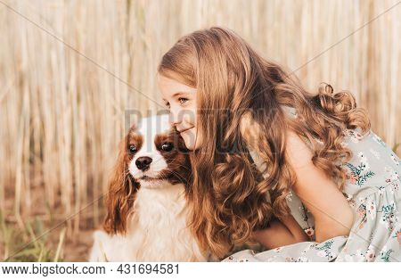Little Girl With A Cavalier King Charles Spaniel Dog Playing In The Summer In Nature