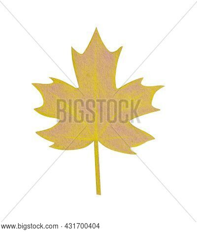 Hand Drawn Yellow Maple Leaf With A Rough Texture. Isolated Plant Drawing With Colored Pencils On Cr