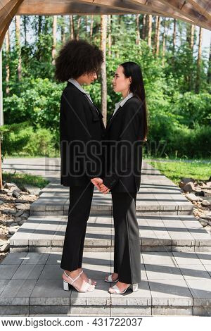 Side View Of Multiethnic Lesbian Couple Holding Hands In Park