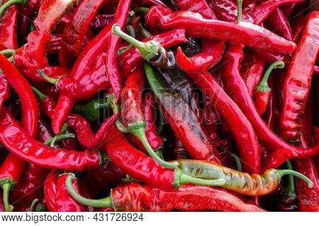 Red Hot Ripe Peppers. Close-up. Pepper Background Or Texture. Collection And Sale Of Peppers.