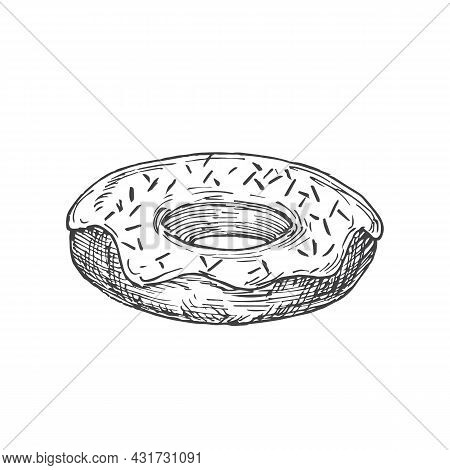 Donut Sweets Hand Drawn Doodle Vector Illustration. Confectionary Sketch Style Drawing. Isolated