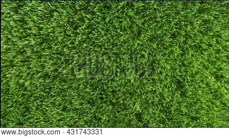 The Texture Of Artificial Green Grass And Lawn. Fresh Green Grass Background.