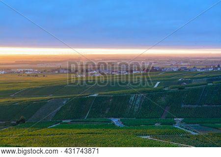 Amazing Sunrise On Rainy Day Over Green Grand Cru Vineyards Near Cramant, Region Champagne, France.